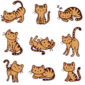 Vector Orange Tabby Cat doodle illustration in various poses