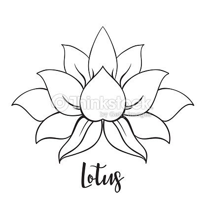 Vector Ornamental Lotus Flower Ethnic Art Patterned Indian Paisley Hand Drawn Illustration