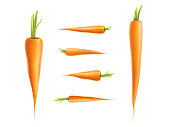 Vector photo-realistic carrot set. 3d vegetable, raw ripe organic and healthy food with cut stem, leaves. Fresh isolated illustration on a white background for advertising, poster design