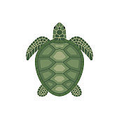 Sea green turtle isolated on white background. Cartoon style Vector Illustration