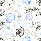 Vector seamless pattern of colored seashells. Hand drawn engraved vintage illustration. Good for wrapping paper, wallpaper, travel and fashion design.