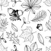 Vector seamless pattern with autumn leaves. Hand drawn vintage style engraved art. Oak, mapple, chestnut, acorns. Use for textile, design, wrapping paper, store