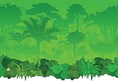 Vector seamless tropical rainforest Jungle background