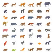 Vector set figures of domestic, farm and wild animals isolated on white background. Black silhouettes kangaroos, deer, lion, leopard, horse, elephant, koala and others.