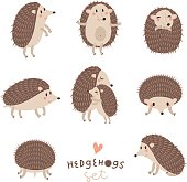 Vector collection of cute hedgehogs.
