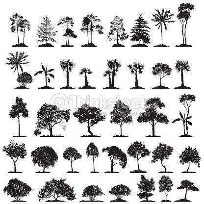 vector set of deciduous trees : stock vector