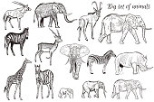 Mega collection or set of vector hand drawn detailed animals savanna theme giraffe zebra elephant antelope