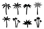Vector set of simple palm trees. Flat cartoon black silhouette of palms on white background.