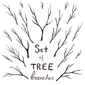 Vector set of tree branches, trunk, twig, stem. Hand-drawing eco design for frames, decoration, greeting, invitation cards, postcards.