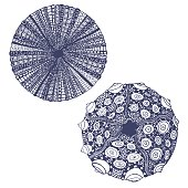 vector set of  hand-drawn urchins