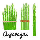 Vector set of vegetable, Asparagus icon set