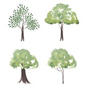 Vector set of watercolor trees. Different Silhouettes Trees of Landscape. Nature for your design. Eco Tree Grunge Natural Vector Concept on a isolated backroup