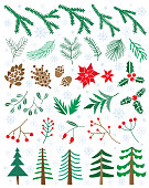 Vector set winter flowers, plants, berries, pinecones. Christmas floral illustration isolated on white
