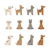 Icons, design elements. Flat style. Domestic animal.