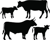 Quality black and white vector silhouettes of a bull, a cow and a calf
