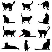 Vector silhouettes of various domestic cat poses