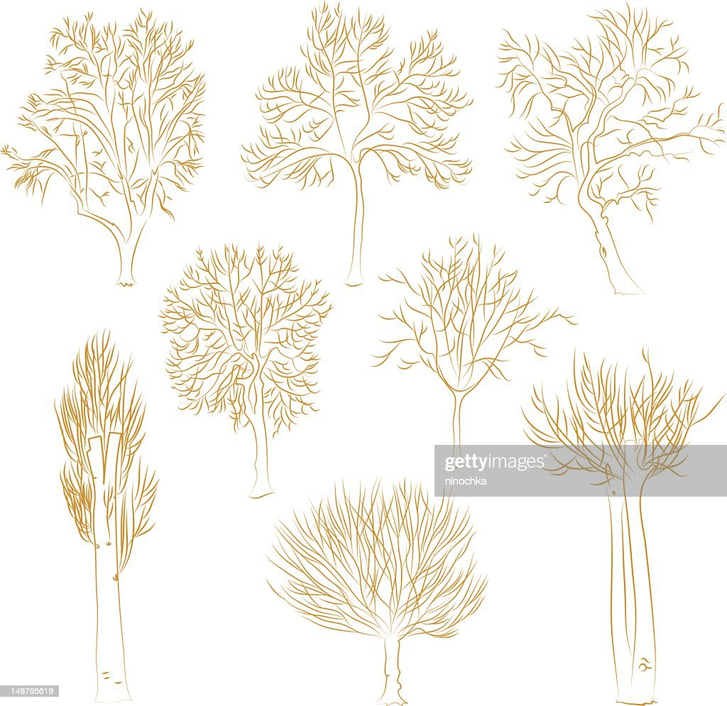 Vector trees : Vector Art
