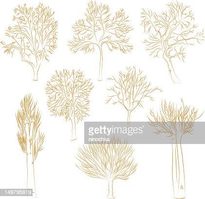 Vector trees : Vector Art