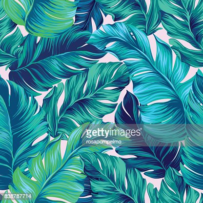 vector tropical palm seamless pattern. amazing vintage style : stock vector