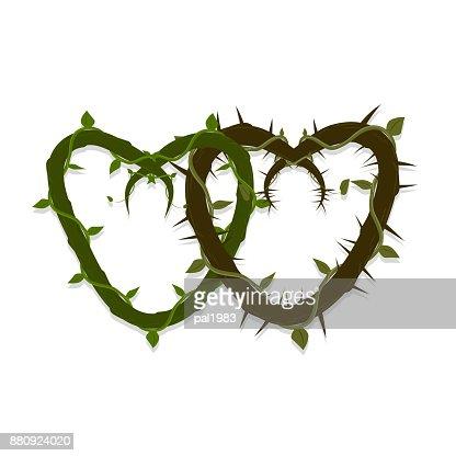 Vektorzwei Ineinander Verschlungene Herzen Der Reben Und Dornen