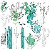 Vector watercolor cactus background