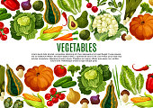Vegetable and mushroom banner of farm product. Tomato, carrot and pepper, cabbage, broccoli, onion, cucumber, corn, olives, pumpkin, avocado, leek and artichoke border for vegetarian menu design