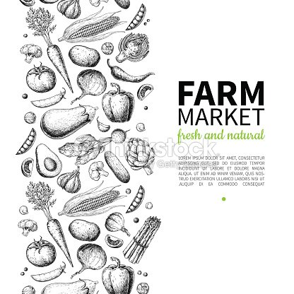Vegetable hand drawn vintage vector frame illustration. Farm Market poster. Vegetarian set of organic products. : stock vector