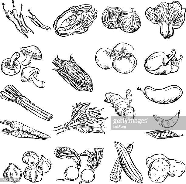 Gemüse in Holzkohle Skizze-Stil