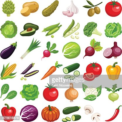 Vegetable : stock vector
