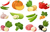 Vegetables, set of colored icons. Farm, food concept Vector illustration