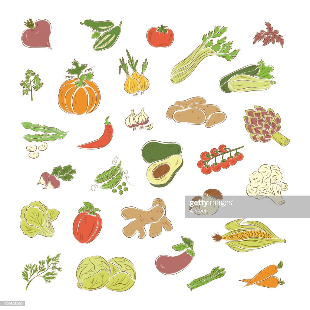 Vegetables vector set. Vegetables icons.