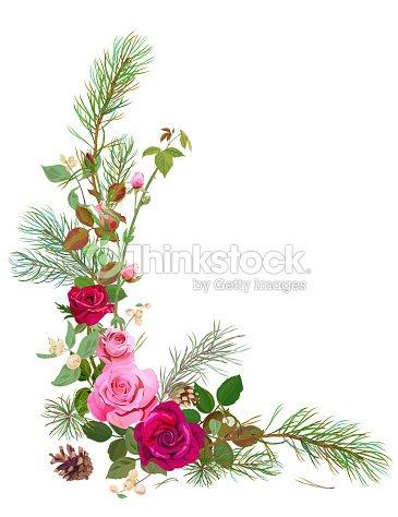 Frontera Vertical Esquina Con Rojo Color De Rosa Rosas Ramas De Pino ...