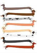 very long colorful Dachshund set.