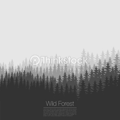 vintage forest design template vector coniferous silhouette woods