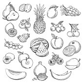 Vintage fruit sketch. Hand drawn fruits icon set, fresh pear and orange, strawberries and pineapple drawing sketch retro vector