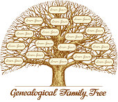 Vintage Genealogical Family Tree. Hand drawn sketch vector illustration