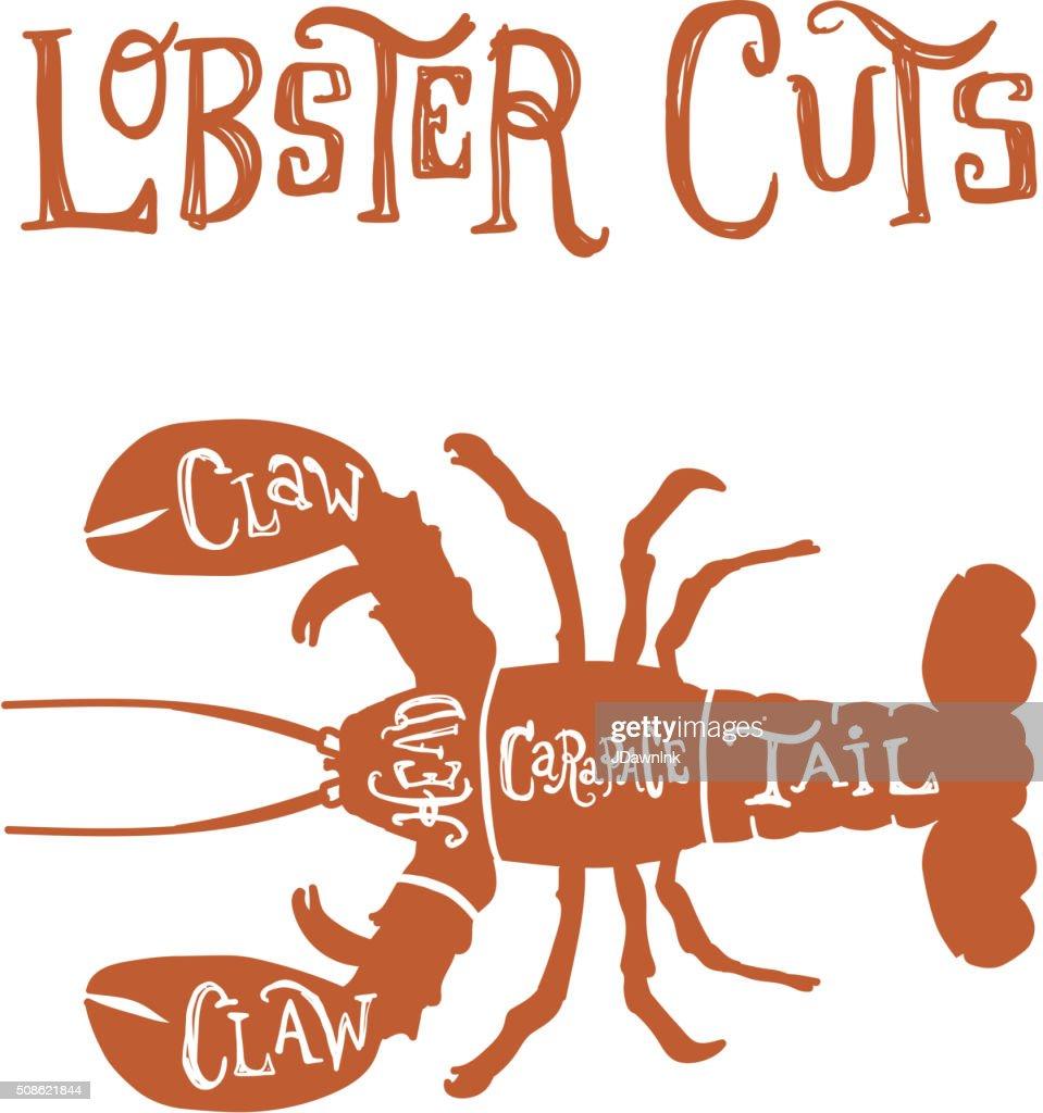 Vintage lobster meat cuts butcher diagram : Vector Art