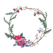 Vintage round frame: thistle, red roses (bouquet, flowers, buds, leaves), prickly branches on white background. Vector illustration, watercolor style. Concept for Halloween. Digital draw.