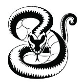 Vector illustration of viper snake isolated on the white background.
