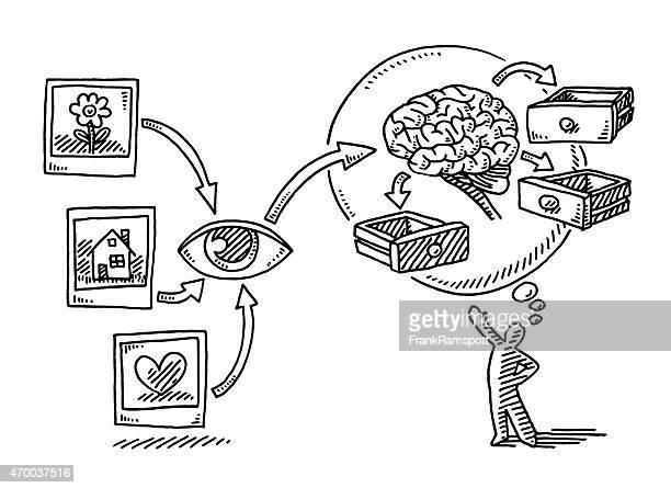 Cerveau, logique visuelle infographies yeux dessin