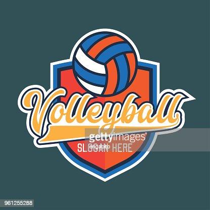 volley ball icon, vector illustration : stock vector