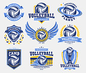 Volleyball emblem set collections, designs templates on a light background