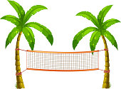 Volleyball net on coconut trees illustration