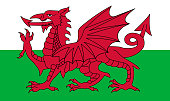 Wales flag, red dragon on the white and green, vector illustration