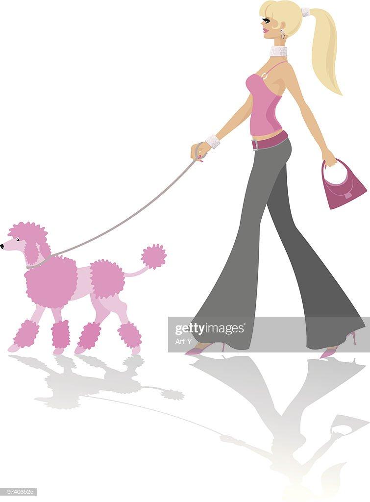 Walking a pink poodle : Vector Art