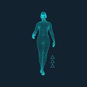 Walking man. 3D human body model. Vector illustration.