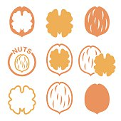 Food icons set - walnuts isolated on white