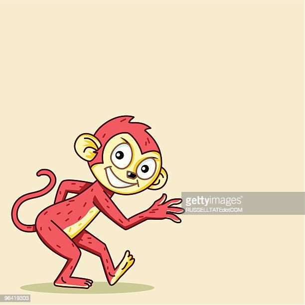 Watchout for the Cheeky Monkey!
