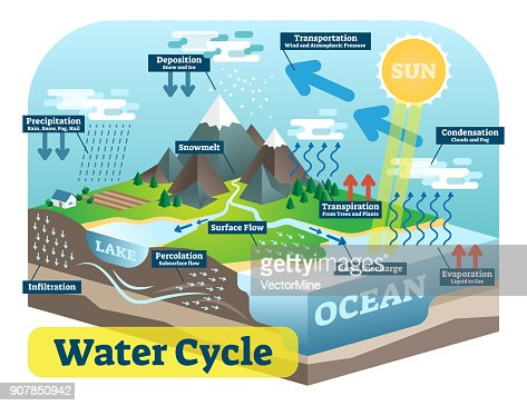 Water cycle graphic scheme, vector isometric illustration. : stock vector