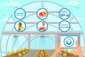 Watering and Irrigation System Concept. Harvesting in Greenhouse Concept. Natural Resource. Growing Plants. Tablet in Hand. Fruit Picking Work. Farm Business Concept. Vector Flat Illustration.